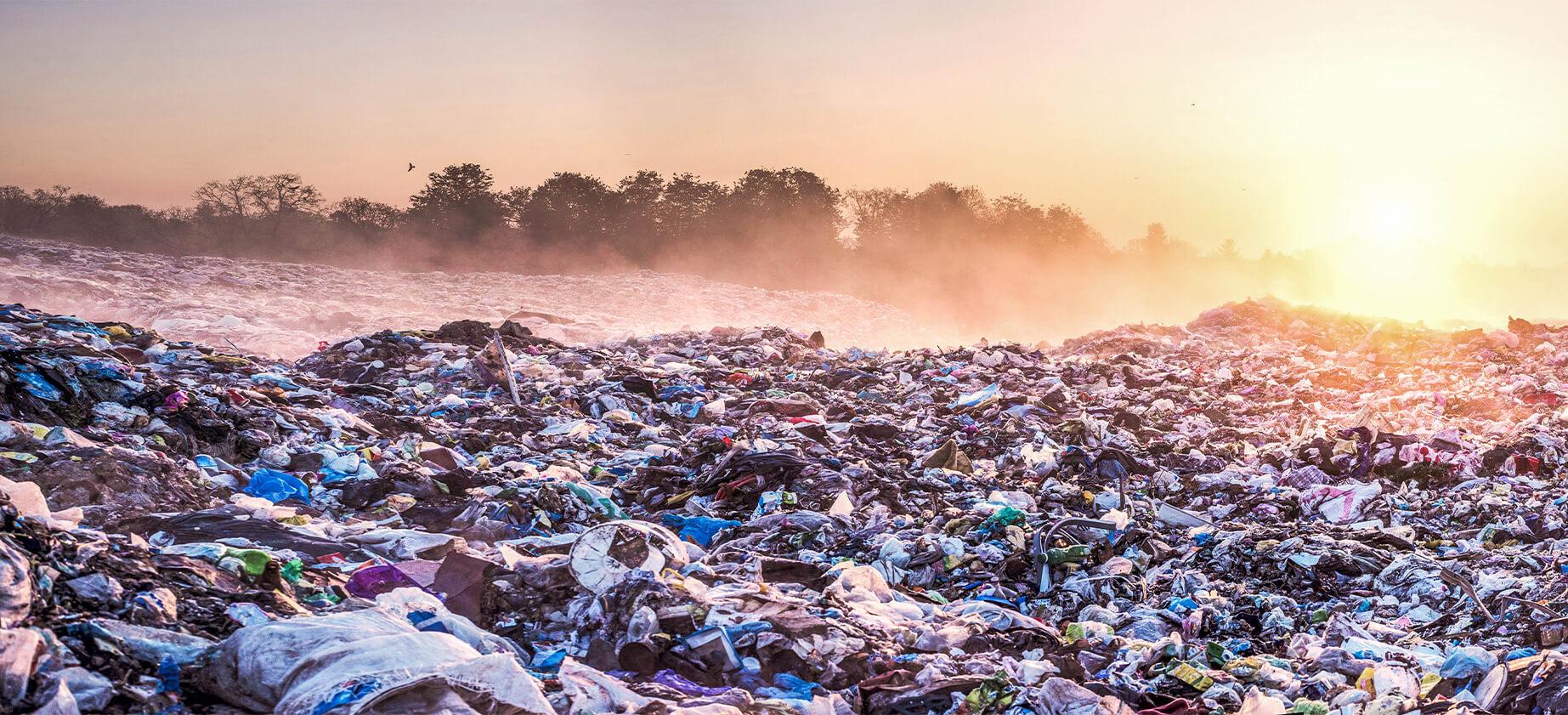 plastic waste und food waste