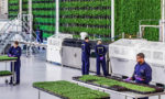 vertical farming agriculture