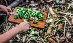 Compost waste zero waste restaurant sustainable