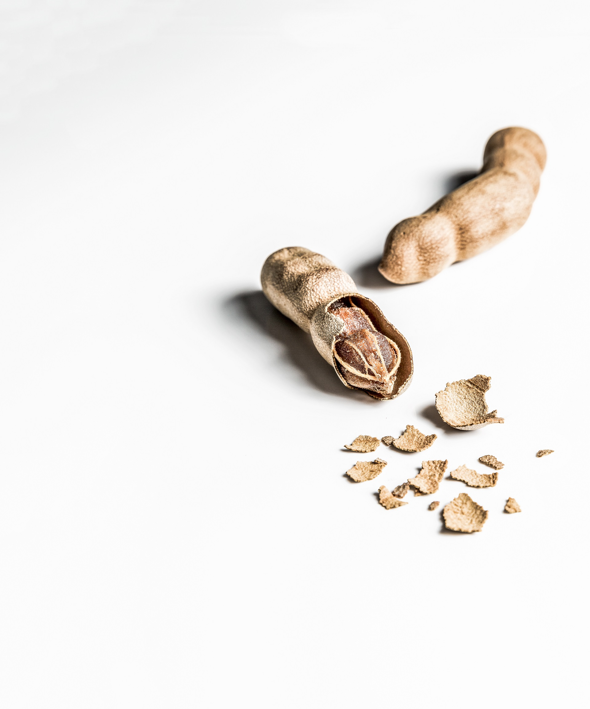 What is a tamarind?